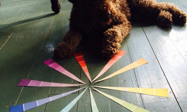 The Colour Wheel: What You Should Know Part 2